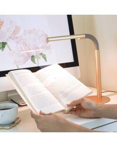 Giana LED Desk Lamp