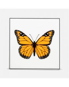 Sous-verre carré «papillon»