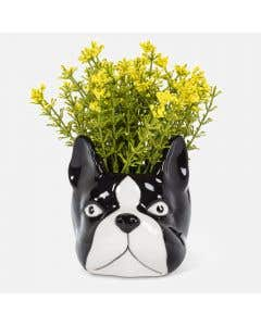 Cache-pot tête de chien par Abbott