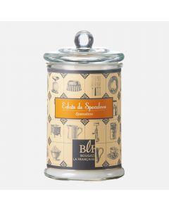 Bougie parfumée Éclats de speculoos dans un grand verre par Maison Berger Paris