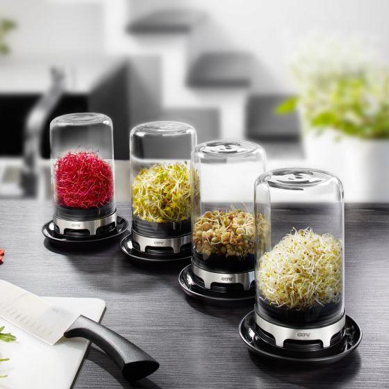 Bivita Sprouting Jar by Gefu