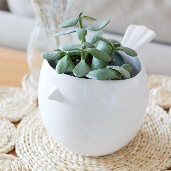 Pot à fleurs en céramique « Finch Bird »