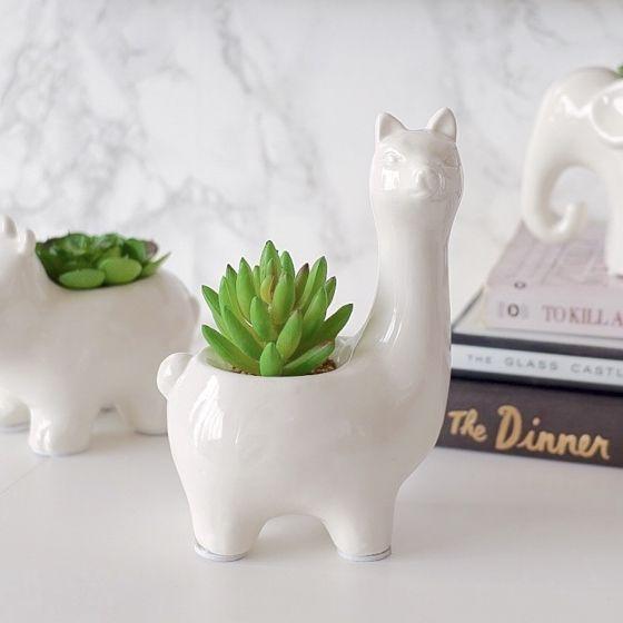 Plante en pot Llama par Torre & Tagus