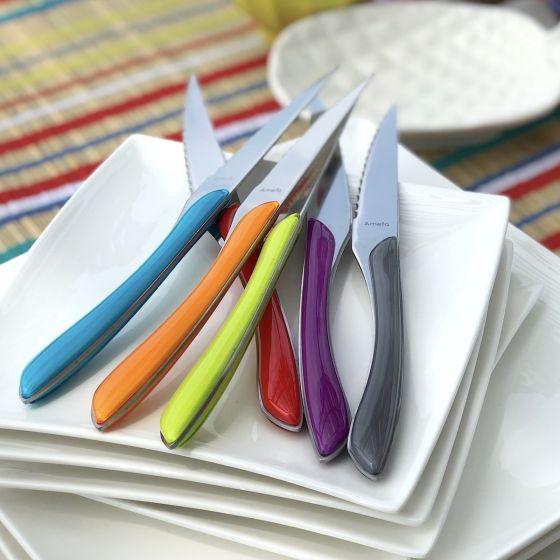 Ensemble de 6 couteaux à steak colorés par Amefa