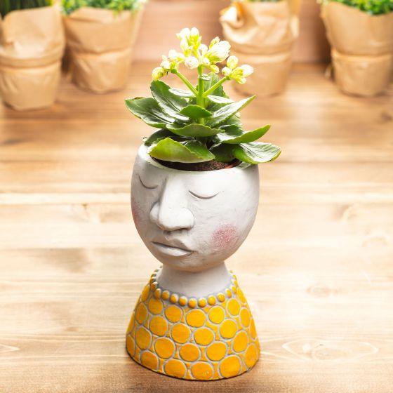 Kinfolk Cement Bust Plant Pot Collection