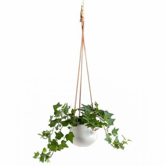 Ashbury Hanging Planter Collection by Torre & Tagus
