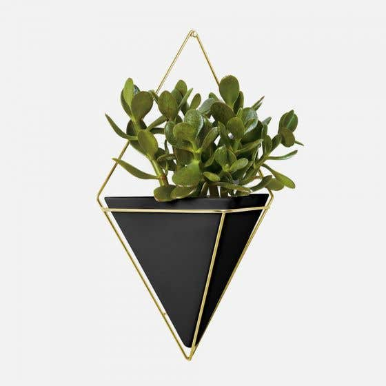 Trigg Hanging Planters by Umbra