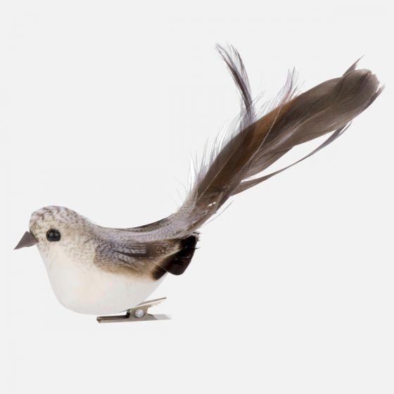 Oiseau sur pince