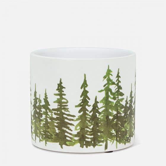 Cache-pot « Evergreens » - 4,5 po